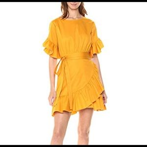Cynthia Rowley wallflower ruffle tie dress size L